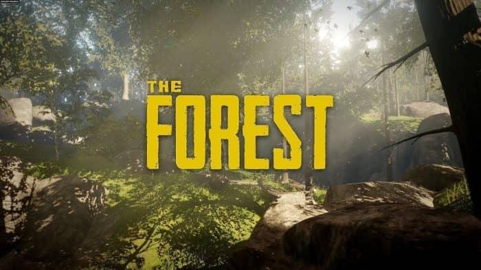 Подробный список со всеми чит кодами для the forest